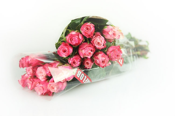 20medium-pink.jpg
