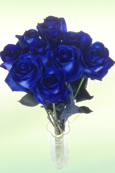 einzelne-blau-vase.jpg